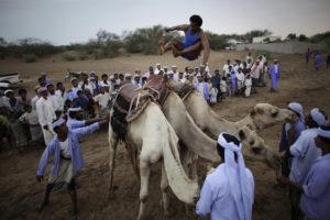 The Camel Jumper