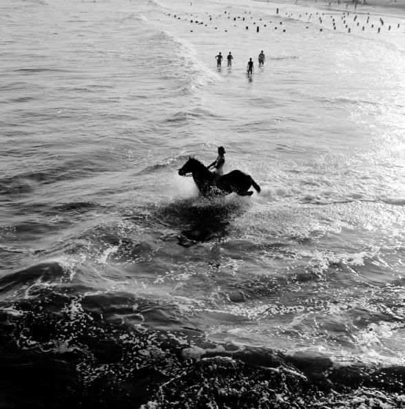 Aquatic Equestrian from Three Lions fine art photography