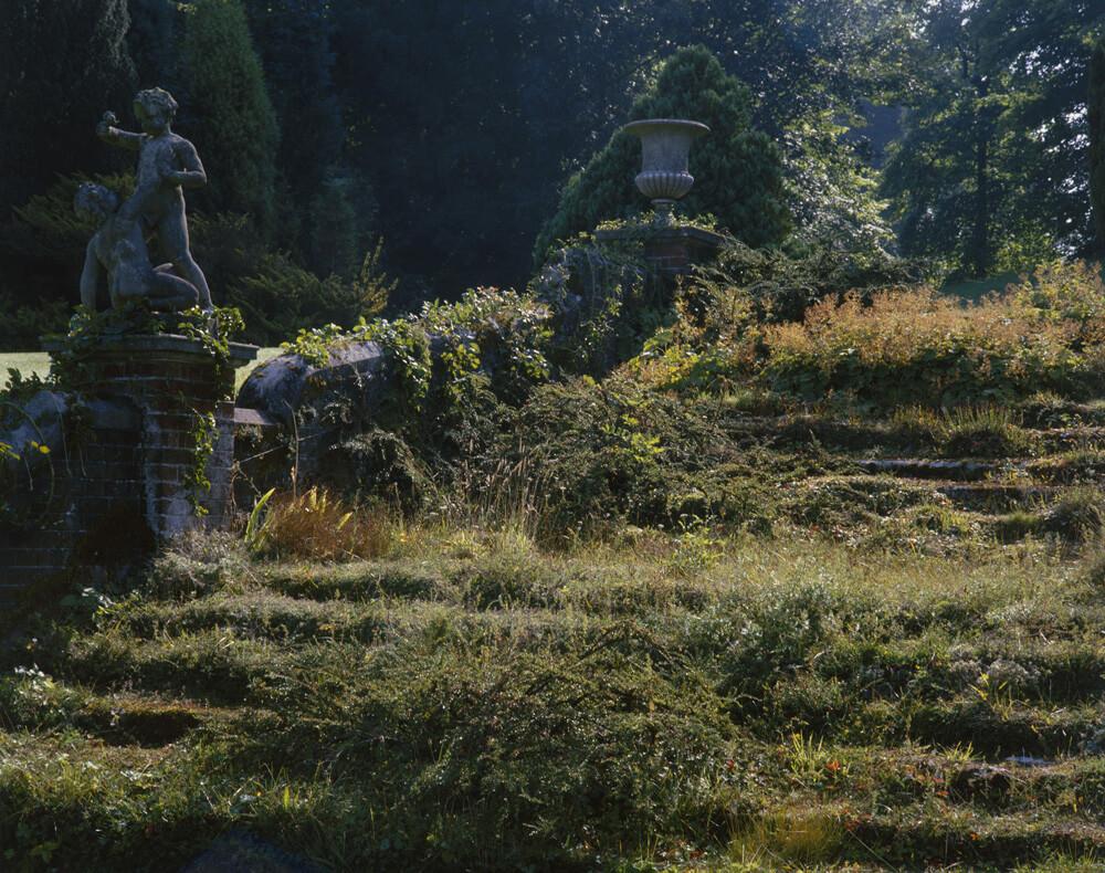 Kent Garden fine art photography