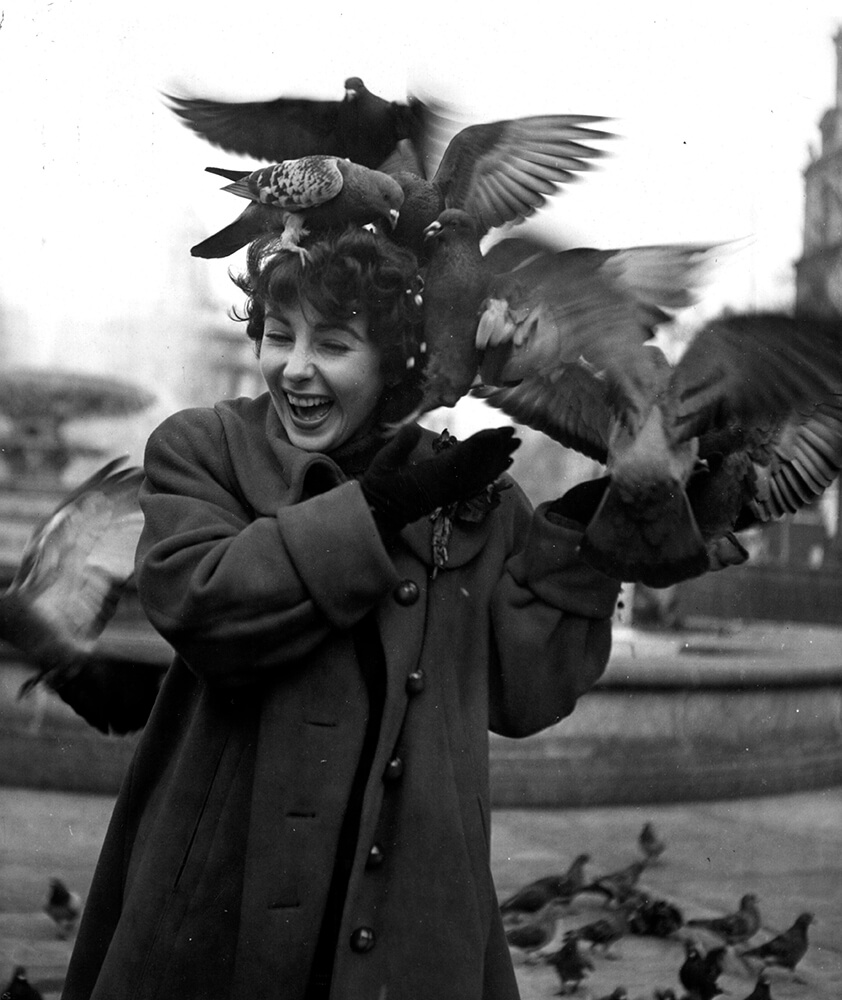 Taylor Feeds Pigeons fine art photography