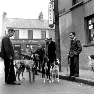Greyhound Club