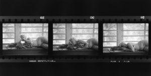 Marilyn Cuddles A Dog