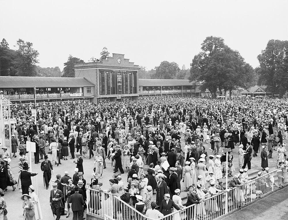 Royal Ascot Crowd fine art photography