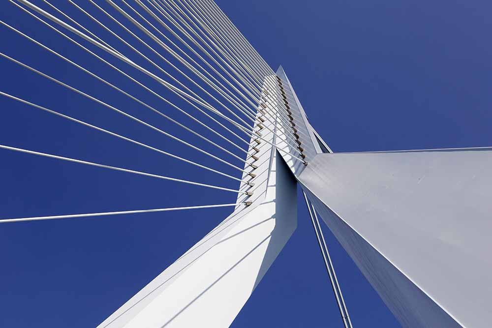 Detail of Erasmusbrug (Erasmus Bridge) fine art photography