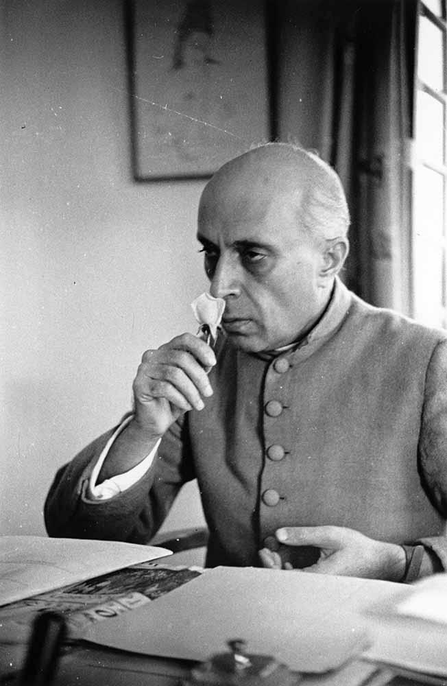 Nehru's Flower fine art photography