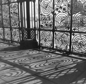 Intricate Shadows