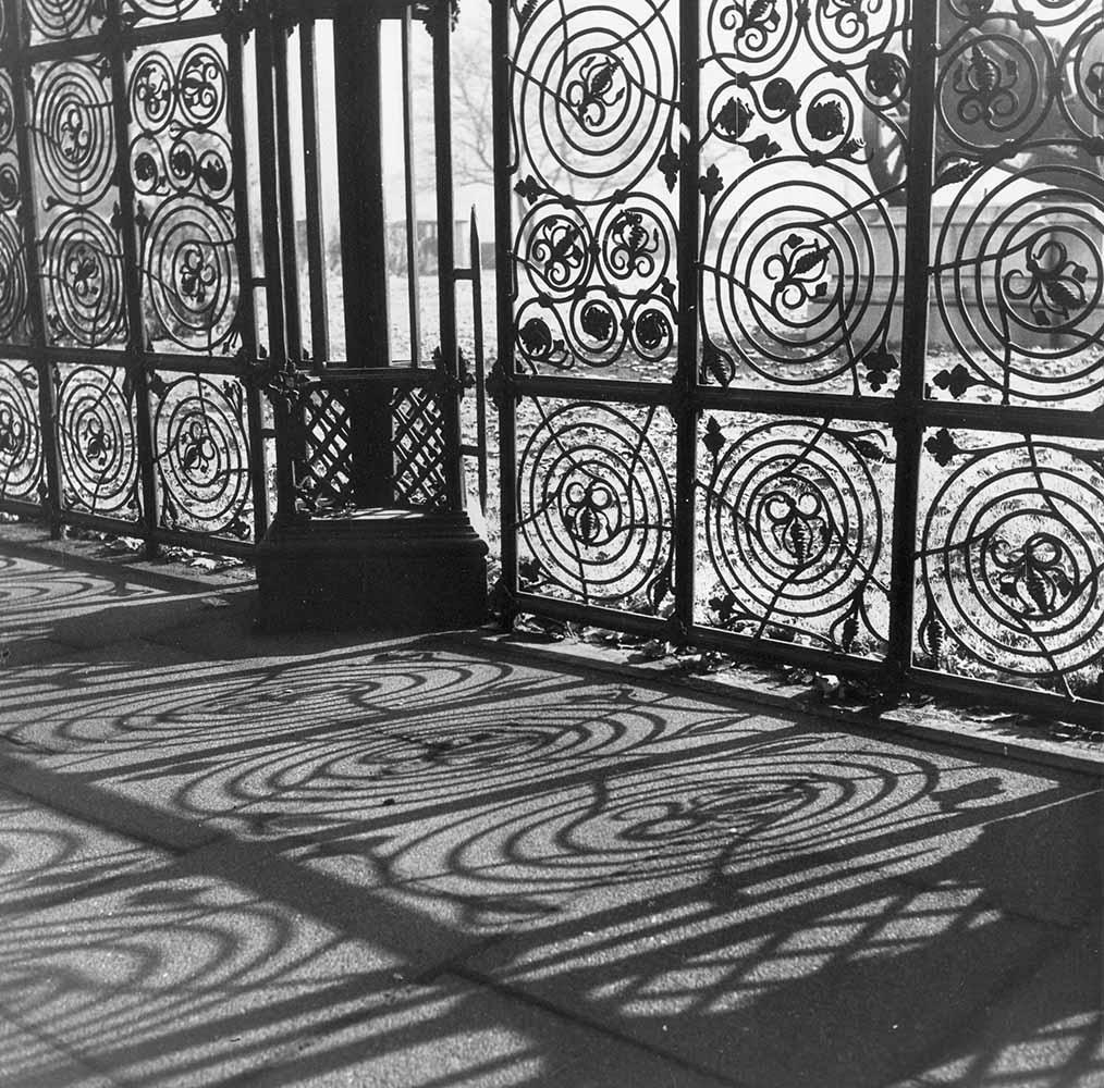 Intricate Shadows fine art photography