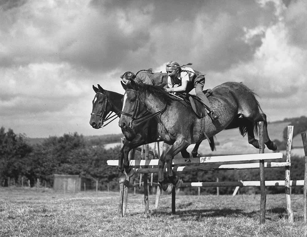 Horses In Harmony fine art photography
