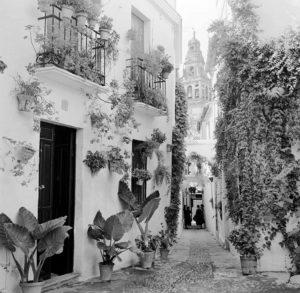 Street In Cordoba
