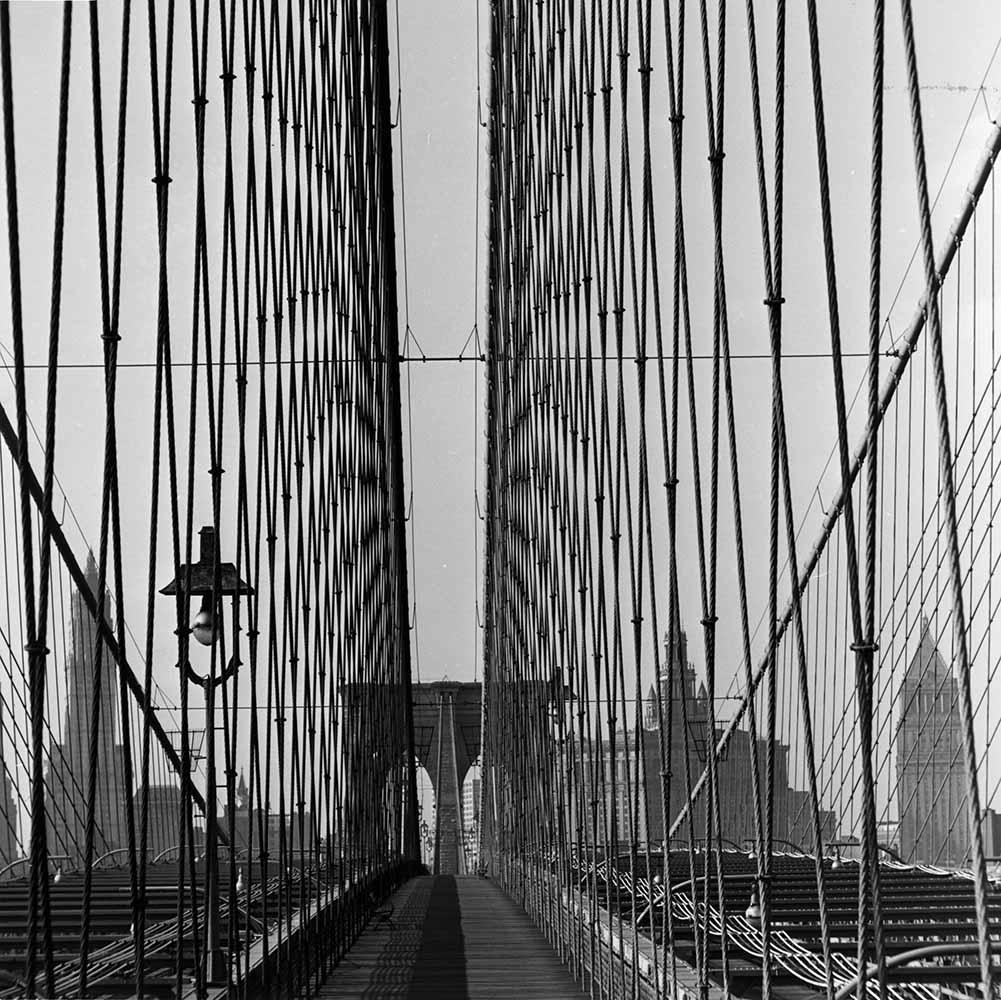 Suspension Wires fine art photography