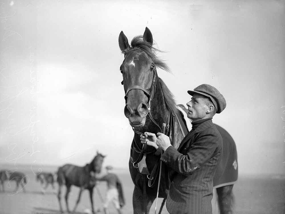 Racehorse fine art photography