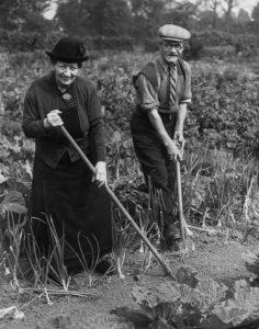 Veteran Gardeners