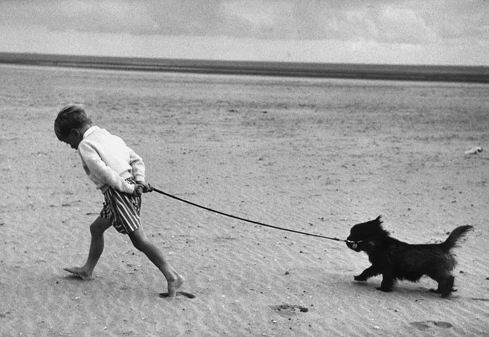 Walking The Dog fine art photography