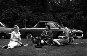 12th May, 1973 H,M, Queen Elizabeth II relaxes surrounded by her pet corgi dogs as she watches a horse competition at Home Park, Windsor