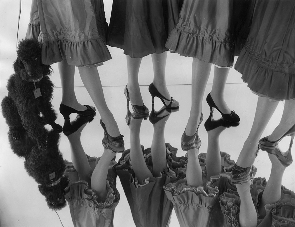 Chic Shoes fine art photography