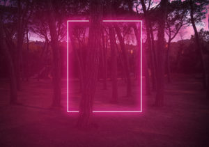 Rectangle red light neon between pine trees with futuristic visual effect.