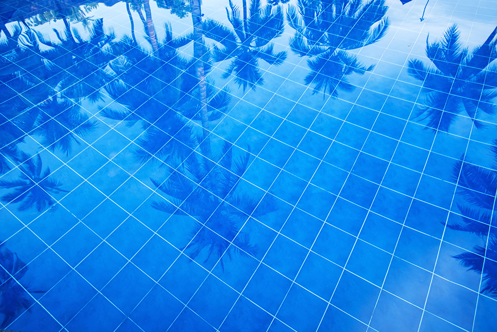 Reflection of palm trees over swimming pool fine art photography