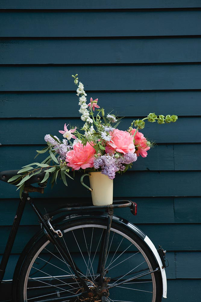 An arrangement of flowers on the back of a bicycle fine art photography